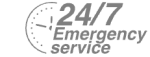 24/7 Emergency Service Pest Control in Edgware, Burnt Oak, HA8. Call Now! 020 8166 9746