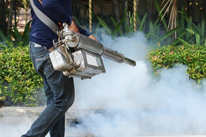 Pest Control in Edgware, Burnt Oak, HA8. Call Now 020 8166 9746