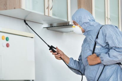 Home Pest Control, Pest Control in Edgware, Burnt Oak, HA8. Call Now 020 8166 9746